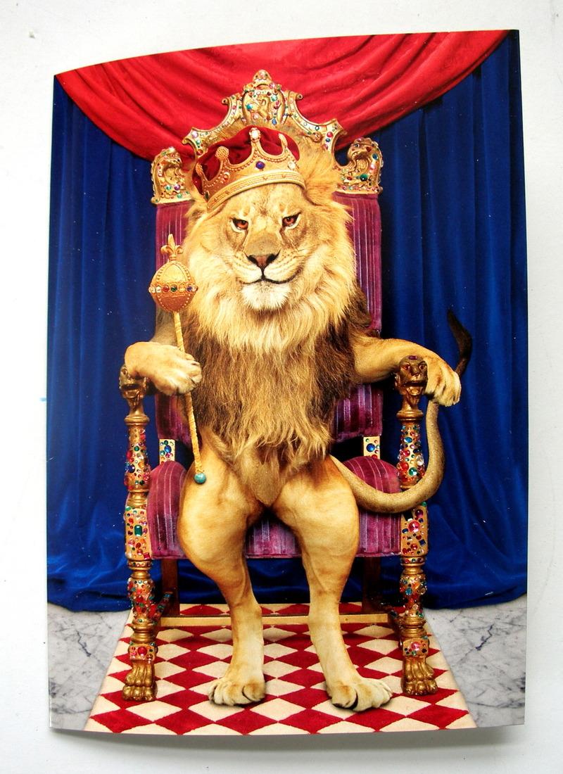 Открытки с днем рождения льву мужчине, днем прощенного